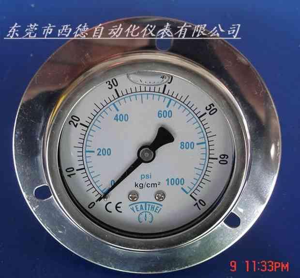 供应轴向充油耐震压力表